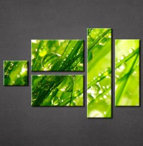 Slika na platnu Zelena trava Nina3051_5