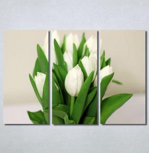 Slike na platnu Bele lale Nina30307_3