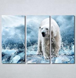 Slike na platnu Beli medved Nina30272_3