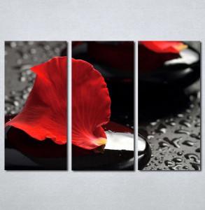 Slike na platnu Crvena latica cveta Nina124_3