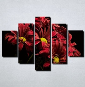 Slike na platnu Crveno cvece Nina115_5