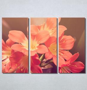 Slike na platnu Cvet u proleće Nina30193_3
