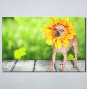 Slike na platnu Dog Nina30221_P