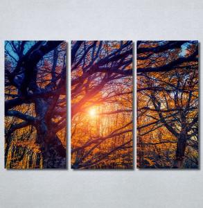 Slike na platnu Drvo Nina30302_3