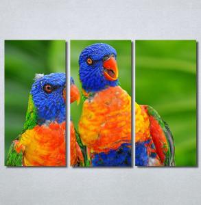 Slike na platnu Dva papagaja Nina 30313_3