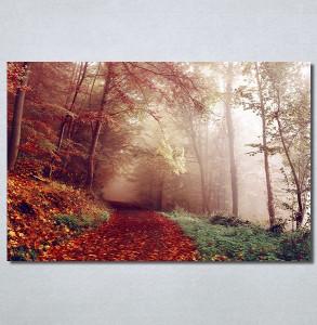 Slike na platnu Jesen Nina30348_P
