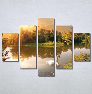 Slike na platnu Labud na jezeru Nina30286_5