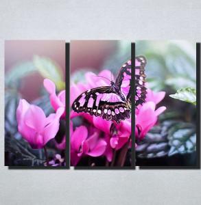 Slike na platnu Leptir Nina160_3