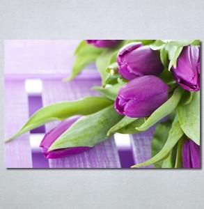 Slike na platnu Ljubicaste lale Nina30340_P