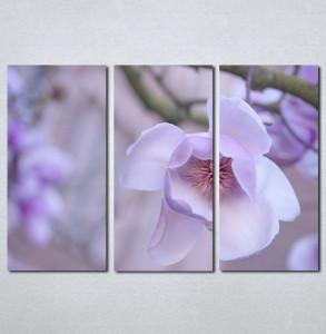 Slike na platnu Ljubicasti cvet Nina001_3