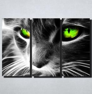 Slike na platnu Macka sa zelenim ocima Nina167_3