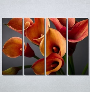 Slike na platnu Narandžaste kale Nina30216_4