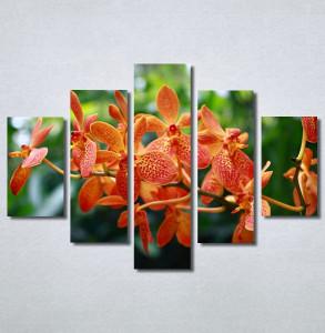 Slike na platnu Narandžasti cvet Nina30233_5