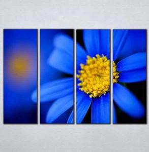Slike na platnu Plavi cvet Nina095_4
