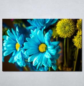 Slike na platnu Plavo i žuto cveće Nina075_P