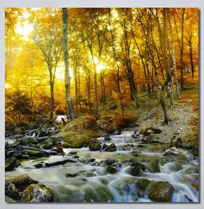 Slike na platnu Potok kroz šumu Nina30273