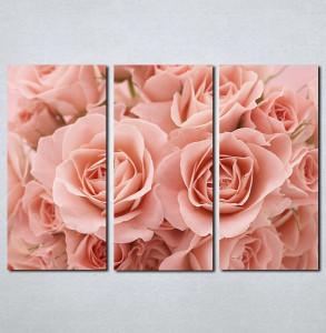 Slike na platnu Roze ruže Nina065_3