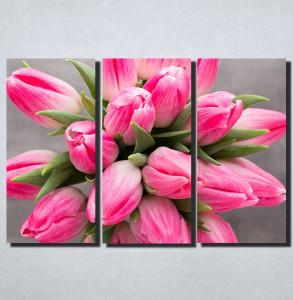 Slike na platnu Roze Tulipani Nina159_3