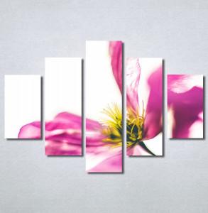 Slike na platnu Ružičaste latice Nina30276_5