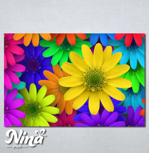 Slike na platnu Šareno cveće Nina250_P