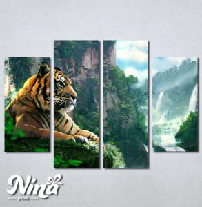 Slike na platnu Tigar Nina245_4
