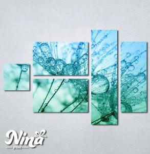 Slike na platnu Tirkizni cvet Nina267_5