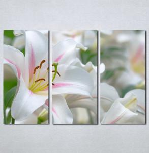 Slike na platnu Veliki beli cvet Nina130_3