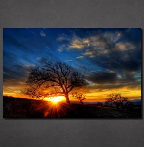 Slike na platnu Zalazak sunca i drvo Nina30123_P