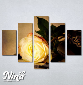 Slike na platnu Žuta ruža Nina242_5