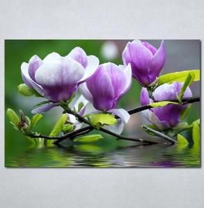 Slika na platnu Ljubičasta magnolija Nina3097_P
