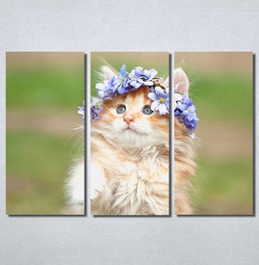 Slike na platnu Cat Nina30230_3