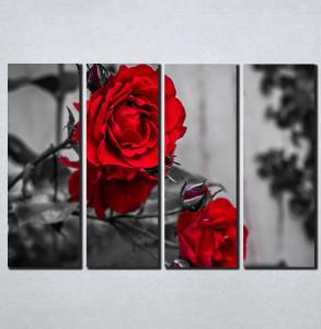 Slike na platnu Crvene ruže Nina098_4