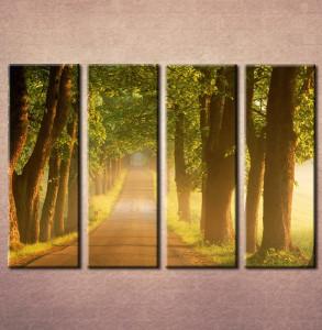 Slike na platnu Drvored Nina3083_4