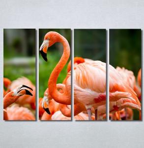 Slike na platnu Flamingo ptica Nina30256_4