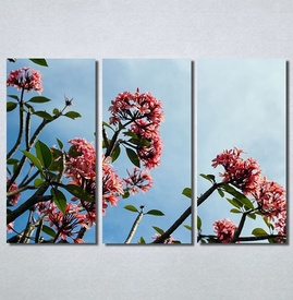Slike na platnu Flower Nina30175_3