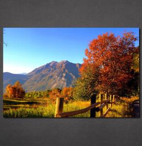 Slike na platnu Jesen na planini Nina30120_P