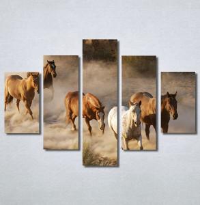 Slike na platnu Konji 2 Nina30337_5