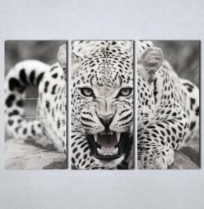 Slike na platnu Leopard Nina123_3
