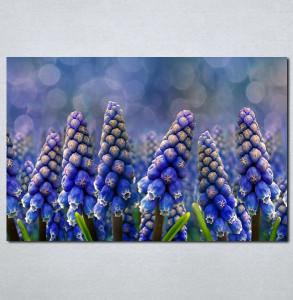 Slike na platnu Ljubicasti cvet neobičnog oblika Nina002_P