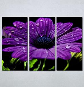Slike na platnu Ljubicasti veliki cvet Nina132_3