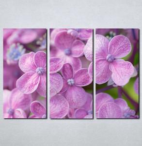 Slike na platnu Ljubicasto cvece Nina081_3