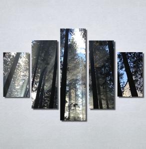 Slike na platnu Mračna šuma Nina30195_5