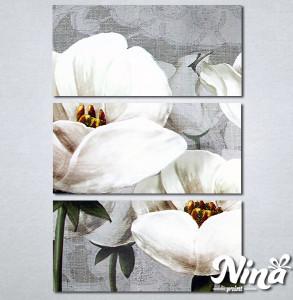 Slike na platnu Nezno beli cvet Nina347_3