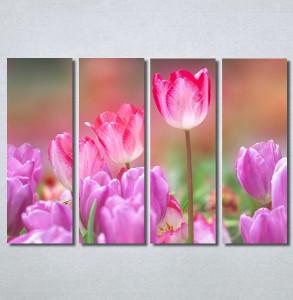 Slike na platnu Pink lale Nina30270 _4