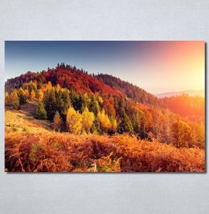 Slike na platnu Planinske jesenje boje Nina30222_P