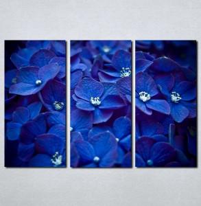 Slike na platnu Plavo cvece Nina059_3