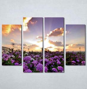 Slike na platnu Polje cveća Nina199_4