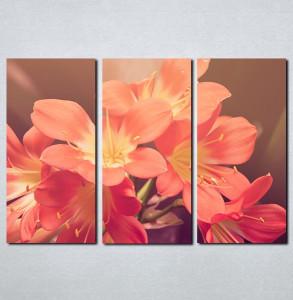 Slike na platnu Roze cveće Nina087_3