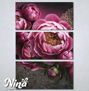 Slike na platnu Slike Božura Nina294_3