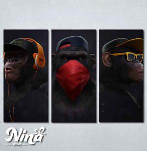 Slike na platnu Tri majmuna Nina255_3